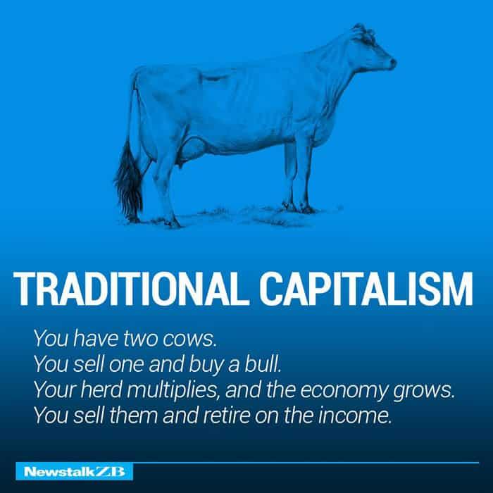 Две Крави обясняват Икономика по-добре от всеки - Muse Creativity студио за дизайн и реклама (1)