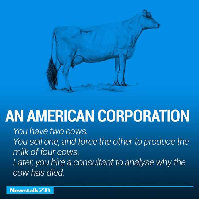 Две Крави обясняват Икономика по-добре от всеки - Muse Creativity студио за дизайн и реклама (3)