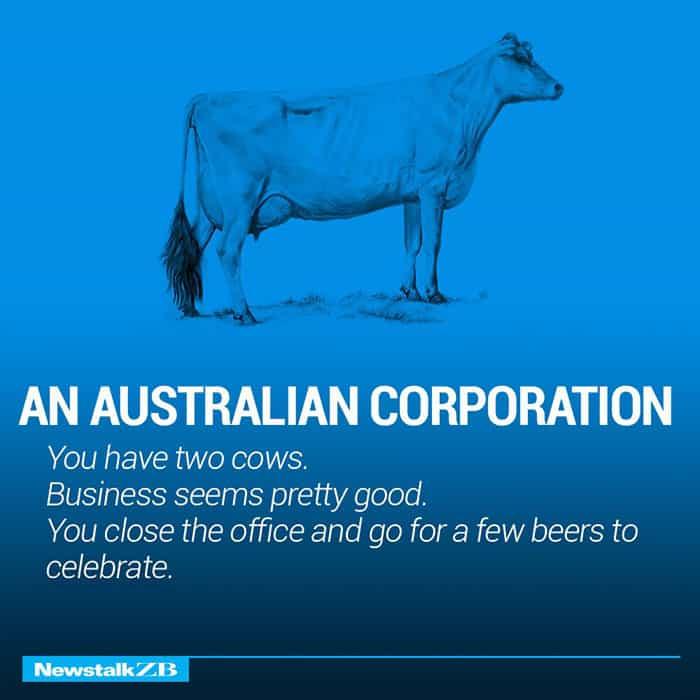 Две Крави обясняват Икономика по-добре от всеки - Muse Creativity студио за дизайн и реклама (5)