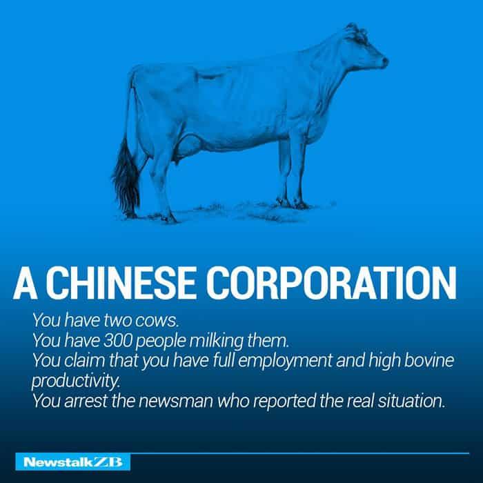 Две Крави обясняват Икономика по-добре от всеки - Muse Creativity студио за дизайн и реклама (8)